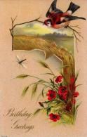 U 08 - UCCELLI - STAMPATA IN RILIEVO - USATA 1910 - Pájaros