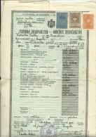 KINGDOM OF YUGOSLAVIA  --     SCHOOL DIPLOMA, CERTIFICATE, CIVIL MALE SCHOOL  --  1938  -- TIMBRE FISCAL, TAX STAMP - Diplome Und Schulzeugnisse