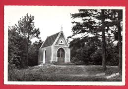 54. Saint-Martin. Chapelle Notre-Dame De Lorette - Francia