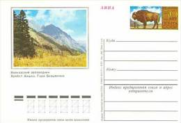 USSR/Russia 1974 50th Anniversary Of The Caucasian Reserve Bison Postcard - Autres