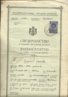 KINGDOM OF YUGOSLAVIA  -  SCHOOL DIPLOMA, CERTIFICATE  --   GYMNASIA   --  1934  - TIMBRE FISCAL, TAX STAMP - Diplome Und Schulzeugnisse