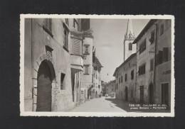 Cartolina Caldaro Kaltern (3) - Italia