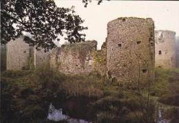 44----HERBIGNAC EN BRIERE---vestiges Du Château Féodal De RANROUET-- Voir 2 Scans - Herbignac