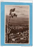 BAALBECK--vue  d�en haut- la ville -les villas  et le site historique   ann�es 30 �dition photo�dition