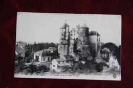MONTBELIARD - Le Château Vu De La Gare - Montbéliard