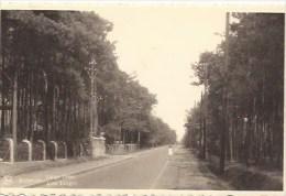 RIJMENAM: Lange Dreef - Bonheiden