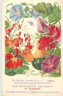 Themes Div -ref M329- Horticulture -fleurs -les Tonnelles Fleuries De Vilmorin -andrieux -paris  -carte Bon Etat  - - Fleurs