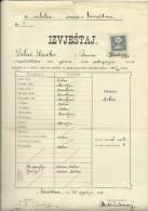 KINGDOM OF CROATIA, SLAVONIA & DALMAZIA -- PITOMACA , VARAZDIN,  CERTIFICATE, GYMNASIA,  1914 - TIMBRE FISCAL, TAX STAMP - Diplome Und Schulzeugnisse