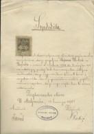 CROATIA  / AUSTRIA  --  MEDJURIC , NEAR KUTINA  --  CERTIFICATE  - 1901  -  BIG VALUE TIMBRE FISCAL, TAX STAMP - Diplome Und Schulzeugnisse