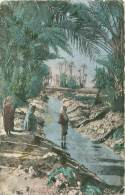 Dans L'Oasis - Algérie