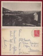 CACCIA TRIESTE ISTRIA PLANINA POSTUMIA - Trieste