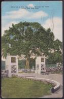 POS-148 CUBA SANTIAGO DE CUBA POSTCARD. PEACE TREE. CHRISTMAS STAMPS + SEMIPOSTAL. 1956. - Cuba