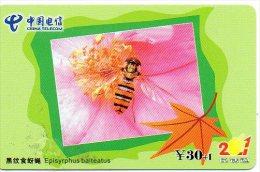 Coccinelle Insecte Télécarte Phonecard Telefonkarten J 330 - Honingbijen