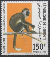 Djibouti Dschibuti 1993 Mi. 582 ** Neuf MNH Singe Vert Monkey Affe Faune Fauna RARE ! - Dschibuti (1977-...)