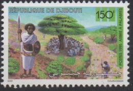 Djibouti Dschibuti 1995 Mi. 615 ** Neuf MNH Arbre à Palabres Palaverbaum Tree Flore Flora RARE ! - Dschibuti (1977-...)