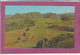 VALLE DE VINALES PINAR DEL RIO CUBA - Cuba
