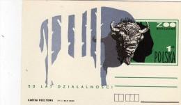 Pologne Carte 50 Ans D'activité Du Zoo De Varsovie Thème Bison - Stamps