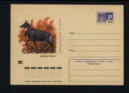 USSR 1971 Postal Cover Fauna Asian Antelope (035) - Autres
