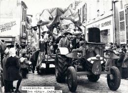 57 MOSELLE - SARREBOURG Son Célèbre Carnaval (voir Descriptif) - Sarrebourg