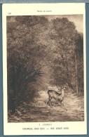 CPA -  CHEVREUIL SOUS BOIS (COURBET) - Pittura & Quadri