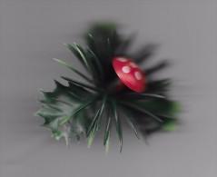 Sujet Pour Bûche De Noël. (Voir Commentaires) - Décoration De Noël