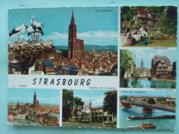 V08-67-bas-rhin-strasbourg-la Petite France -l'orangerie-pl. Kleber-maison De L'europe--pont-vue Generale- - Strasbourg