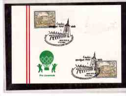 AU135   -  WELS  17.5.1991    /    LANDES-SPORTFEST WELS - Francobolli