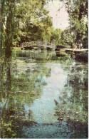 Novy Afon - Pools - Abkhazia - Black Sea Coast - 1966 - Georgia USSR - Unused - Géorgie