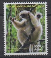 Madagascar Madagaskar 2014 / 2015 Mi. 2685 Faune Fauna Lemur l�murien Propithecus candidus MNH **