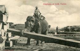 CEYLON(TYPE) ELEPHANT - Sri Lanka (Ceylon)