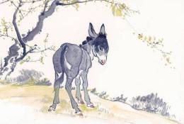(NZ06-069  ) Painting Donkey Dos D´âne Esel Anes ,  Postal Stationery-Postsache F -Articles Postaux - Burros Y Asnos