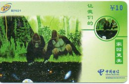 Singe Monkey Animal Télécarte Phonecard Telefonkarten B 34 - Chine