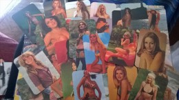 Small Pocket Calendar Collection - Sexy Woman Vintage (50 Differents) - Calendarios