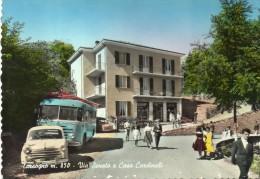 TORNOLO , Tarsogno - Parma