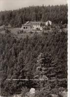 AUSTRIA - Gasthaus Almfrieden 1965 - Hohe Wand - Österreich