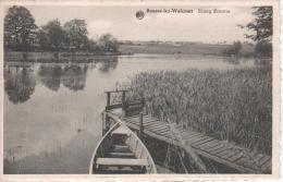 Boussu-lez-Walcourt  Etang Ernotte - Froidchapelle