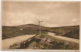 I3909 Rippon Tor - Dartmoor / Non Viaggiata - Inghilterra