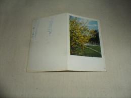 PETIT CALENDRIER PUBLICITAIRE / BUISSON GENETS   1958 - Calendriers