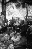 P78 - Famille Pique Nique Et Automobiles  - Négatif Photo Ancien - Persone Anonimi