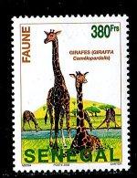 (cl.12 - P.27) Senegal ** N° 1680 (ref. Michel Au Dos) - Girafes - - Girafes