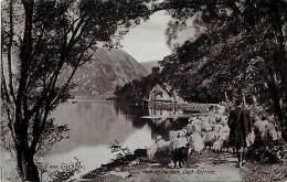 - Royaume Uni - Ref- A682 - Loch Katrine - Path By The Loch -  Carte Bon Etat - - Ecosse