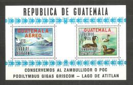 Hb-11 Guatemala - Guatemala