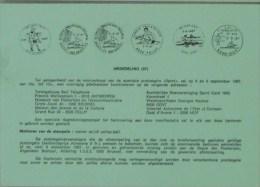 België 1987 Postdienst - Roeien Volley-bal - Roeisport