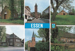 Grote Kaart Essen Groeten Uit Un Bonjour De Greetings From Grusse Aus (In Zeer Goede Staat) Antwerpse Kempen - Essen