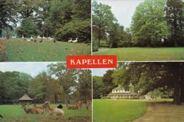 Grote Kaart Kapellen Park - Kapellen