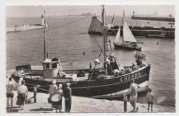50 MANCHE - SAINT VAAST LA HOUGUE L'avant-port, Au Fond L'Ile De Tatihou - Saint Vaast La Hougue