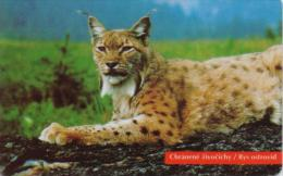 SLOVAKIA PHONECARDS ANIMAL-50000cps -10/96-USED(2) - Oerwoud