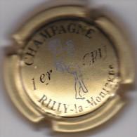 RILLY LA MONTAGNE - Champagne