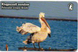 Oiseau Bird Télécarte Phonecard Telefonkarten B201 - Other