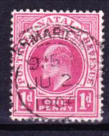 Natal - König Edward VII. (Mi.Nr.: 59) 1902 - Gest. Used Obl. - Sud Africa (...-1961)